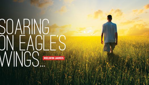 Soaring on Eagle's Wings…